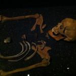Vasa múzeum
