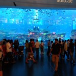 Dubai Aquarium a Under Water Zoo