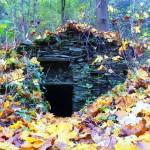 Lesný domček