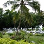 Starý kreolský cintorín