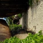 Vchod na Anse Source d'Argent