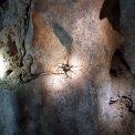 Nam Talu Cave
