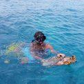 Šnorchlovanie s korytnačkou