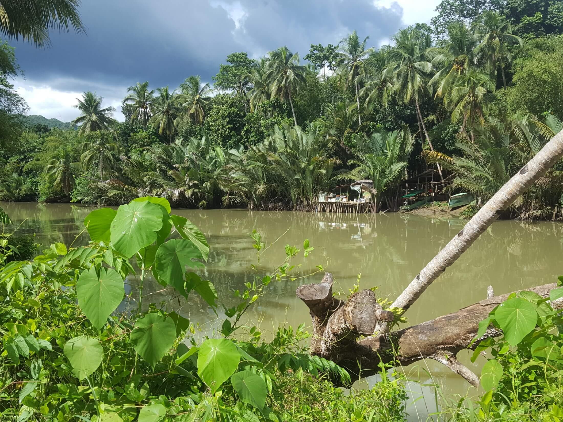 Bohol river